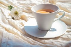 Morning coffee in white cup and nice white flower on the white plaid stock photo