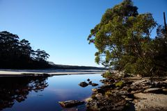 Morning on wild Tasmanian river Stock Photography