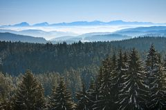 Morning winter calm mountain landscape Royalty Free Stock Photography
