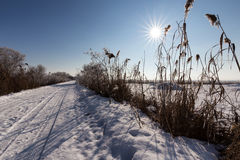 Morning winter on meadow with blue sky and beautiful sun. Morning winter on meadow with blue sky stock images