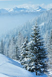 Morning winter misty mountain landscape Stock Photography