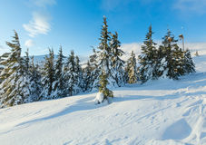 Morning winter mountain landscape (Carpathian). Stock Images