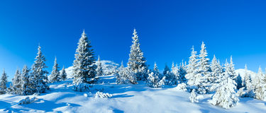 Morning winter mountain landscape (Carpathian, Ukraine) Royalty Free Stock Photos