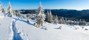 Morning winter mountain landscape (Carpathian, Ukraine) Royalty Free Stock Photos