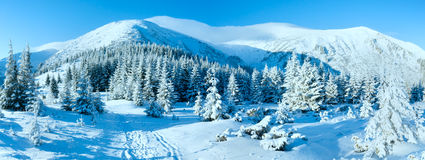 Morning winter mountain landscape Stock Photography