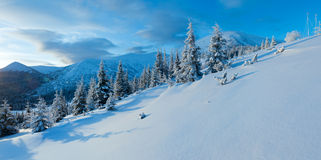 Morning winter mountain panorama (Carpathian, Ukraine). Stock Image