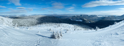 Morning winter mountain panorama (Carpathian, Ukraine). Stock Images