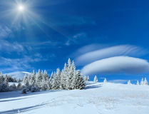 Morning winter mountain sunshiny landscape. With fir trees on slope Stock Images