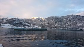 Morning winter snow. Ocean Mountain fishfarm royalty free stock photos