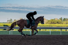 Morning Workouts on Dirt Track. With jockey silhouette Stock Photography