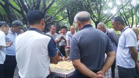 Shenzhen, China: middle-aged and elderly men play chess. In the morning, in Xixiang Park of Shenzhen, the middle-aged and old men played chess as entertainment royalty free stock photography