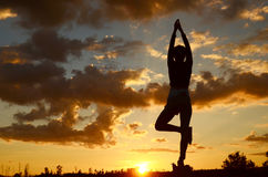 Morning yoga Royalty Free Stock Photos
