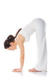 Morning Yoga Royalty Free Stock Images