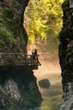 Morning zen at Vintgar gorge Stock Image