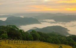 Morningtime y montaña de la niebla Imagenes de archivo