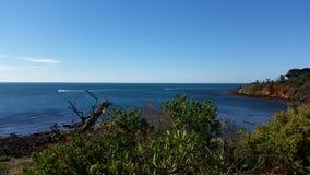 Mornington widok na ocean w lecie Fotografia Royalty Free