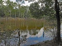 Moro Bay State Park royaltyfria foton