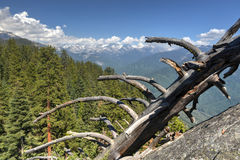 Moro Rock, Sequoia National Park Stock Images