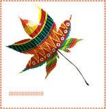 moroccan клена листьев Стоковые Фото