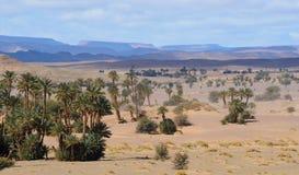 moroccan ландшафта пустыни Стоковые Изображения