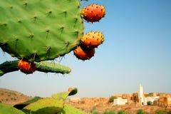 moroccan ландшафта Стоковая Фотография