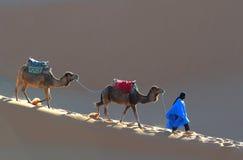 moroccan пустыни светлый Стоковые Изображения