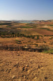 Moroccan Agriculture. Panoramic shot of the agricultural fields of Morocco Stock Photography