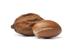 Moroccan Argan nuts Stock Photo