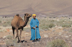 Moroccan Cameldriver Royalty Free Stock Images
