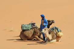 Moroccan Cameldriver Stock Images