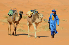 Moroccan Desert Stock Photo