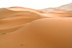 Moroccan desert dune background. Desert landscape in the region of  Sahara, Morocco Royalty Free Stock Photos