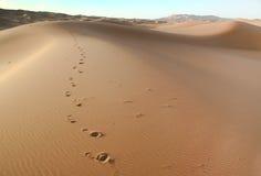 Moroccan desert dune background. Desert landscape in the region of  Sahara, Morocco Stock Image