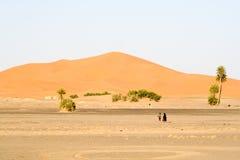 Moroccan desert dunes landscape. The Moroccan desert dunes landscape Royalty Free Stock Photos