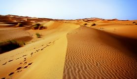A moroccan desert scenery composed of sand dunes spreading to th Royalty Free Stock Images