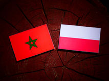 Moroccan flag with Polish flag on a tree stump isolated. Moroccan flag with Polish flag on a tree stump vector illustration