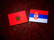 Moroccan flag with Serbian flag on a tree stump royalty free stock photos