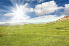 Moroccan Green Meadow Stock Photos