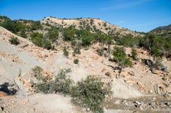 Moroccan hilly desert turns green after rare rain.  stock photos