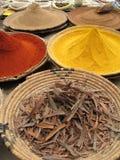 moroccan krydda Arkivfoto