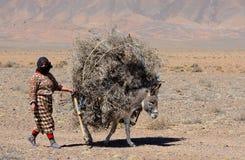 moroccan kvinna Arkivfoto