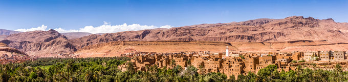 Moroccan landscape of palm Royalty Free Stock Photography
