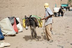 Moroccan man and donkey Stock Photography
