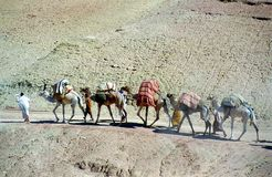 moroccanen vallfärdar Royaltyfri Foto
