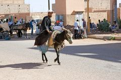 Morocco, berber man and donkey Stock Photos