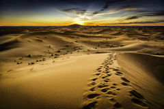 Morocco Desert. Beautiful view on a top of a Dune on Morocco Desert Stock Images