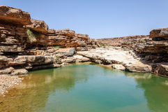 Morocco, Draa valley, pond Royalty Free Stock Photos