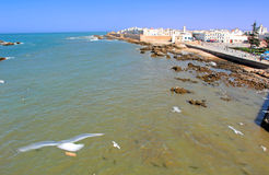 Morocco, Essaouira. Panoramic view of the city and the coastline royalty free stock photography