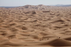Morocco. A great view of the desert in Morocco Royalty Free Stock Image