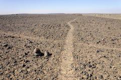 Morocco, Hamada du Draa, path crossing Royalty Free Stock Photo